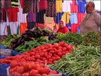 egenin pazarları