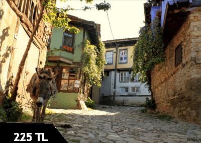Cumalıkızık, Bursa ve İznik